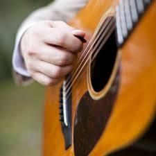 Bluegrass Band, The